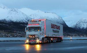 camión zona nevada
