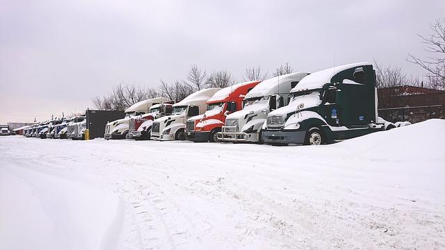 cadenas para nieve